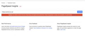 Google Speed Insights Error