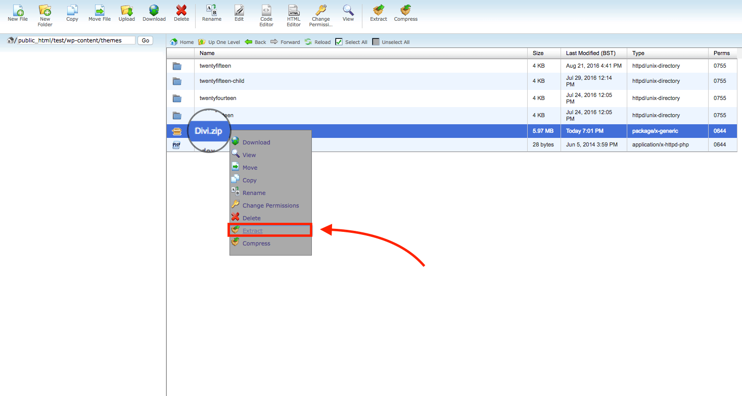 Cpanel extracting a theme