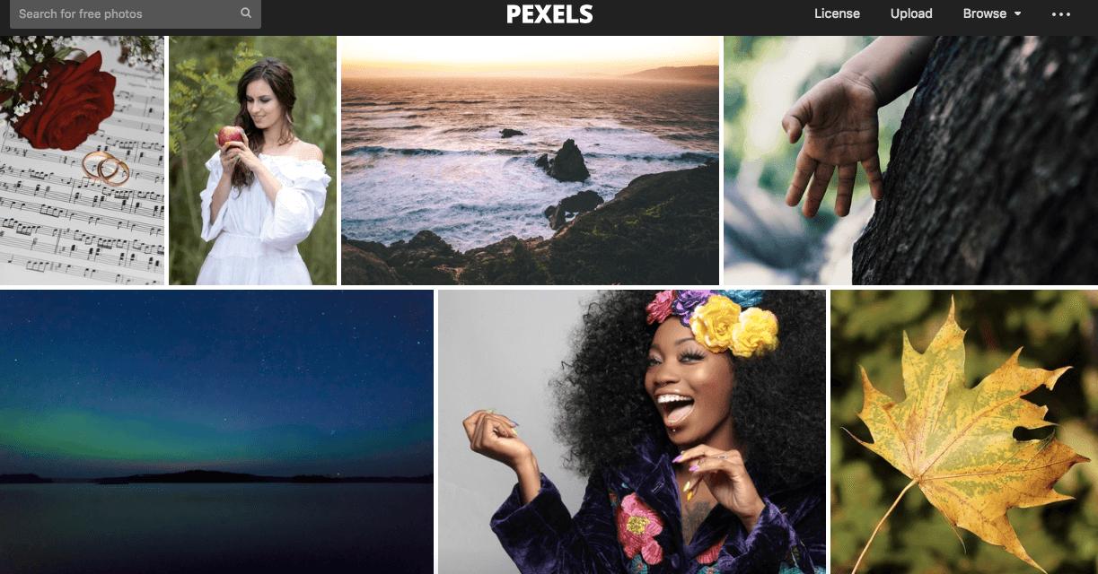 pexel free images