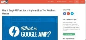 Wordpress 101 Blog
