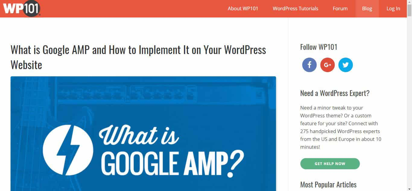 Wordpress 101 Blog