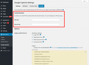 Google reCAPTCHA Authentication