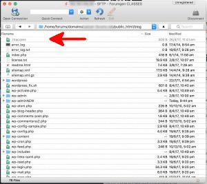 Open htaccess file in Cyberduck