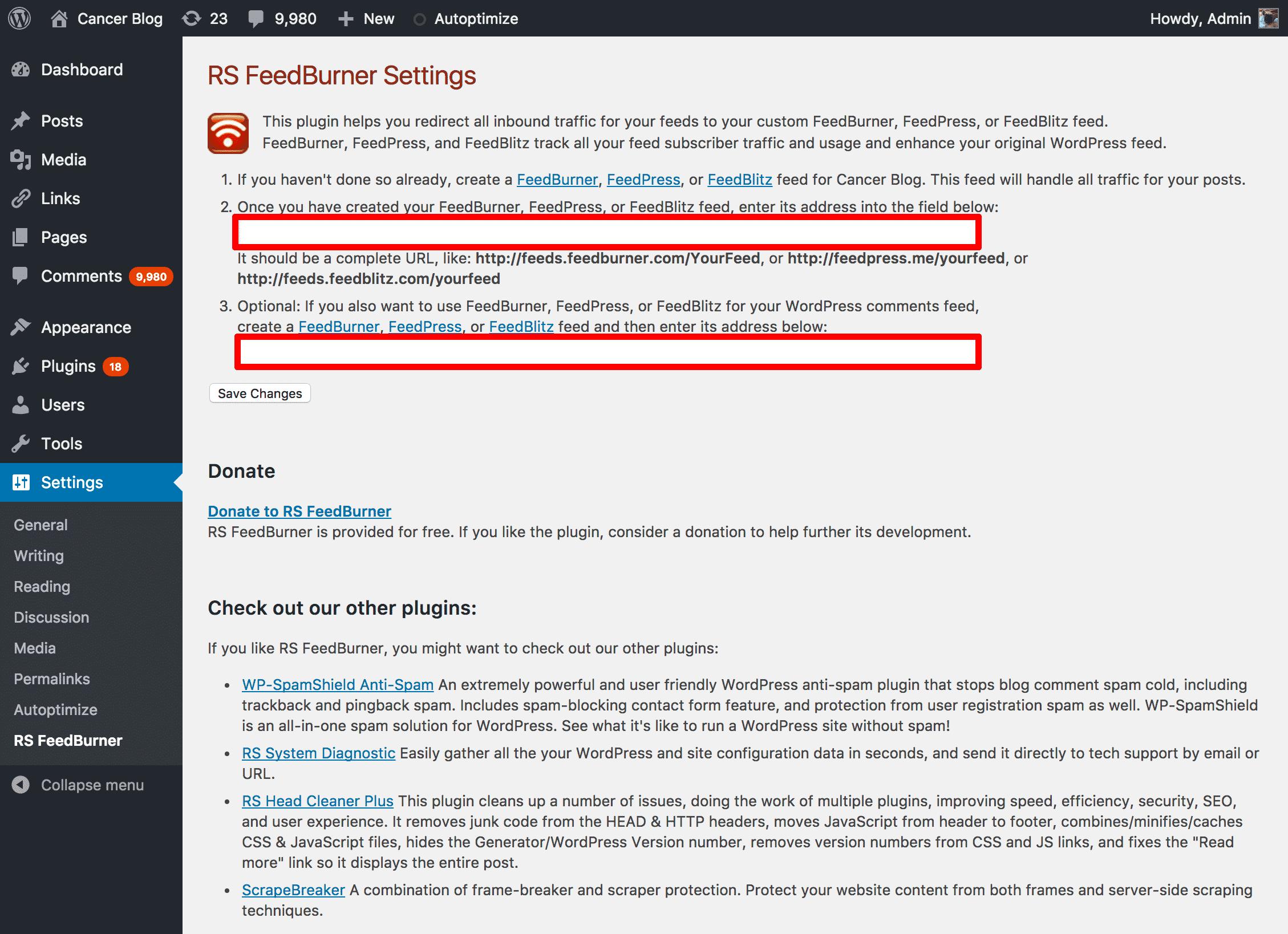RSS Feedburner Plugin Settings