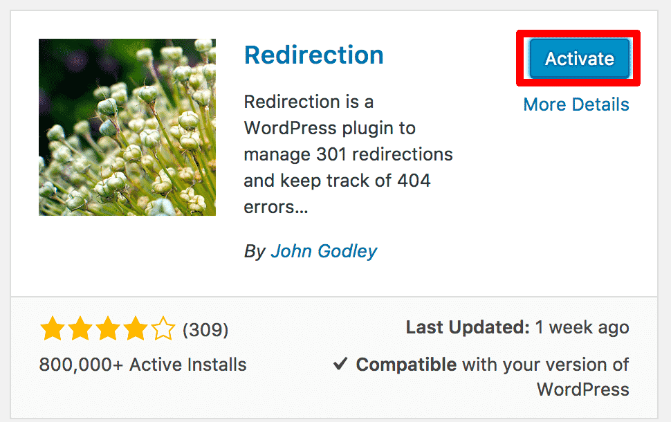 Activating Redirection Plugin WordPress
