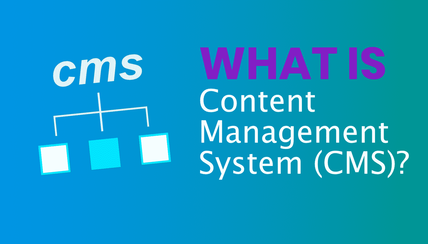 What is: CMS Management